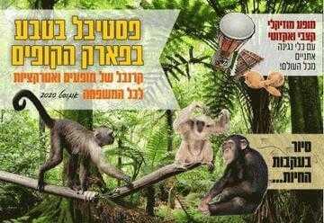 פסטיבל בטבע פארק הקופים קיץ 2020 כרטיסים